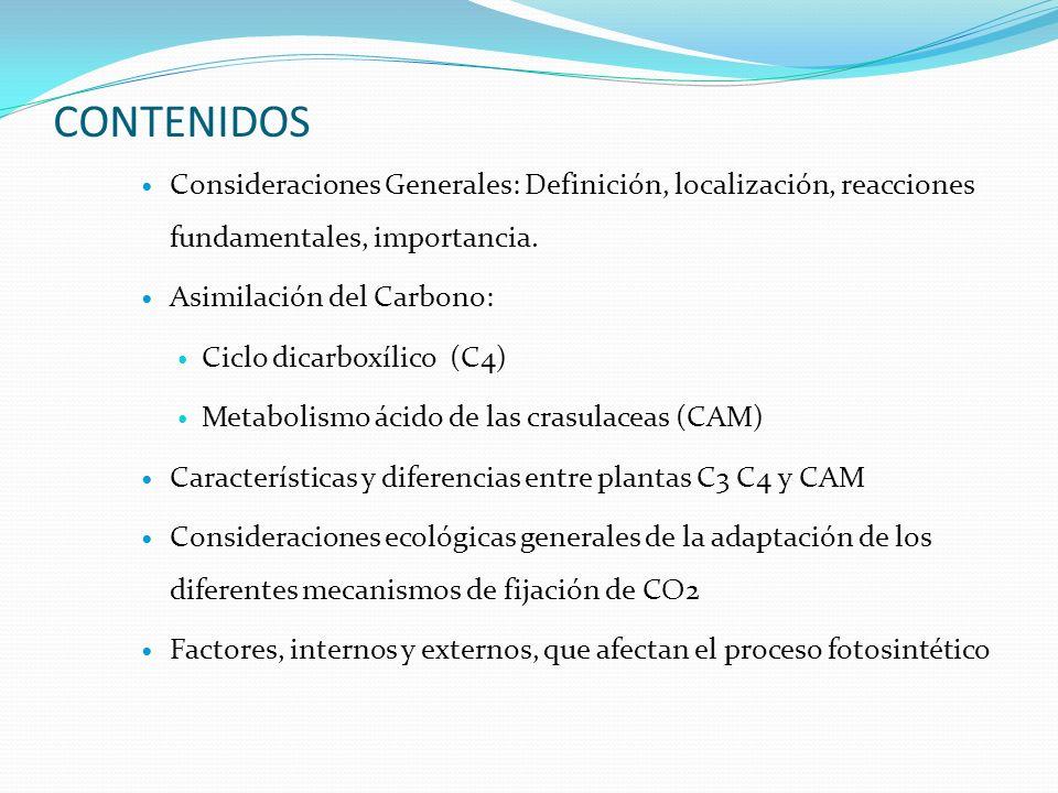 CONTENIDOS Consideraciones Generales: Definición, localización, reacciones fundamentales, importancia. Asimilación del Carbono: Ciclo dicarboxílico (C