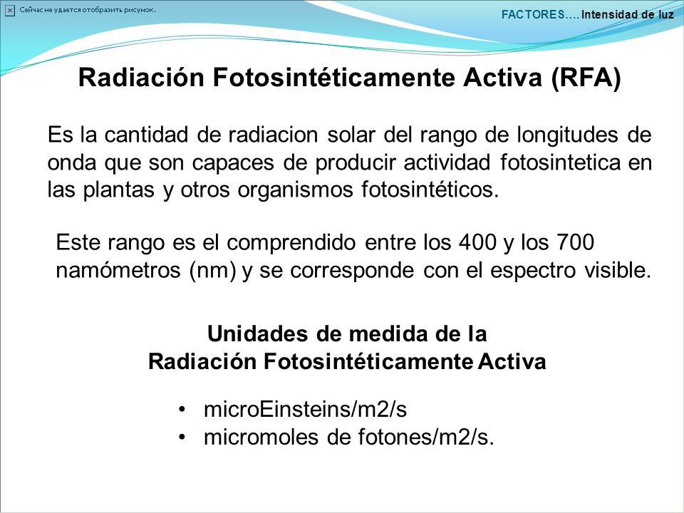 Unidades de medida de la Radiación Fotosintéticamente Activa FACTORES…. Intensidad de luz Radiación Fotosintéticamente Activa (RFA) Es la cantidad de