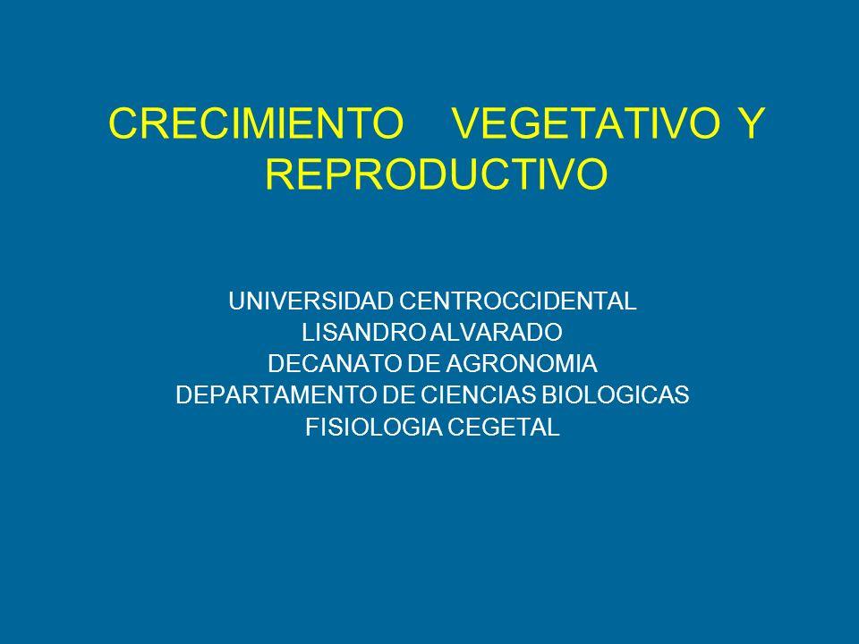 FITOCROMOS= CROMOPROTEINAS FITOCROMOS= CROMOPROTEINAS Pr= Forma Inactiva y Estable PFr= Forma Activa e inestable