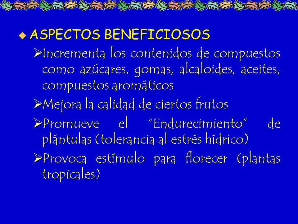 ASPECTOS BENEFICIOSOS ASPECTOS BENEFICIOSOS Incrementa los contenidos de compuestos como azúcares, gomas, alcaloides, aceites, compuestos aromáticos I
