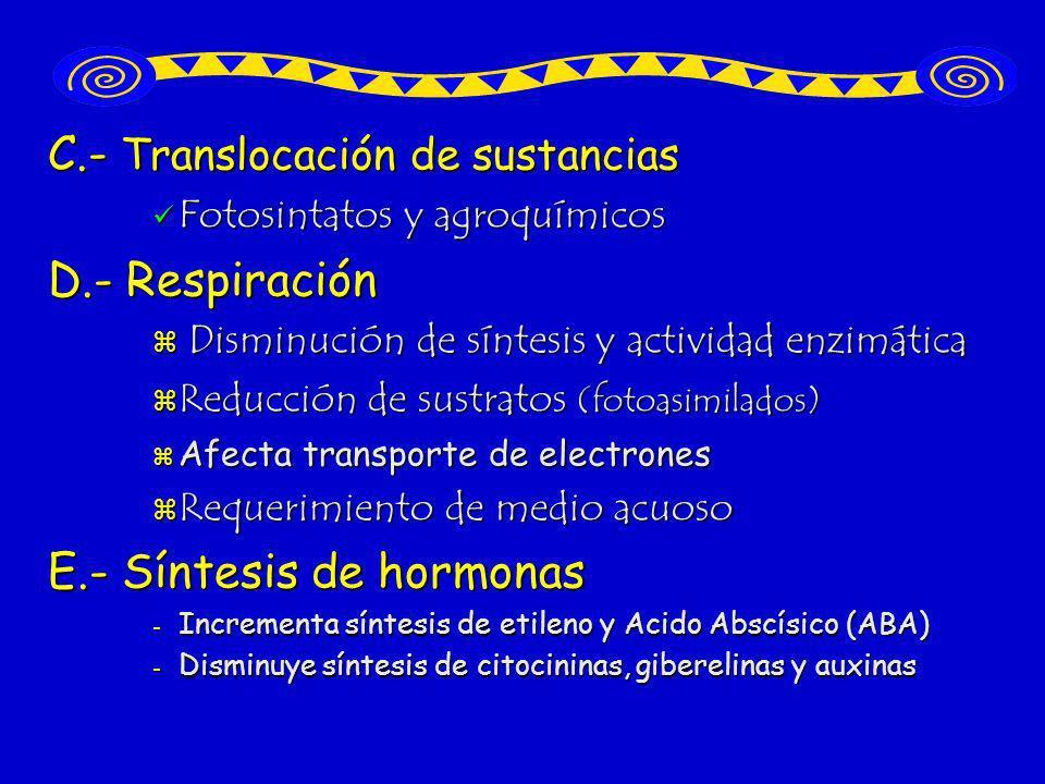 C.- Translocación de sustancias Fotosintatos y agroquímicos Fotosintatos y agroquímicos D.- Respiración Disminución de síntesis y actividad enzimática