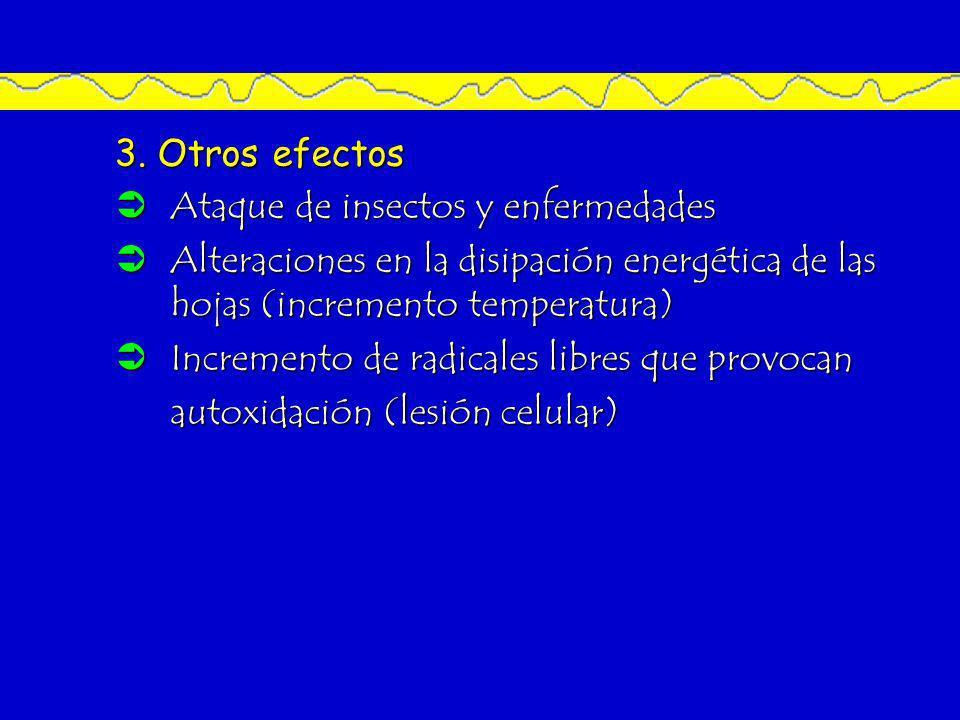 3. Otros efectos Ataque de insectos y enfermedades Ataque de insectos y enfermedades Alteraciones en la disipación energética de las hojas (incremento