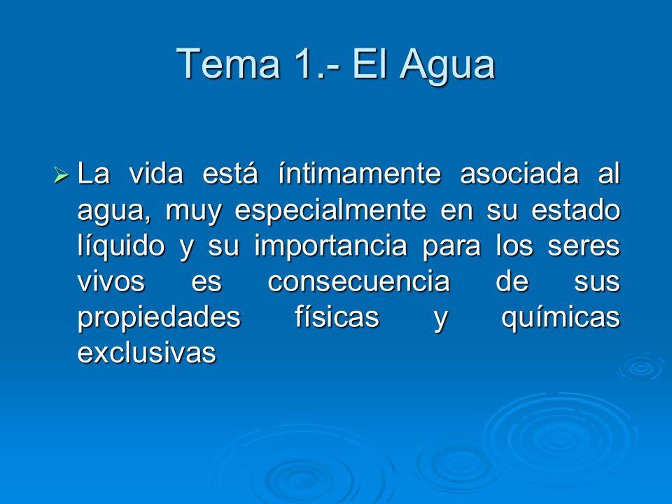 Tema 1.- El Agua La vida está íntimamente asociada al agua, muy especialmente en su estado líquido y su importancia para los seres vivos es consecuenc