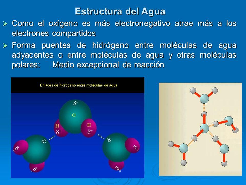 Como el oxígeno es más electronegativo atrae más a los electrones compartidos Como el oxígeno es más electronegativo atrae más a los electrones compar