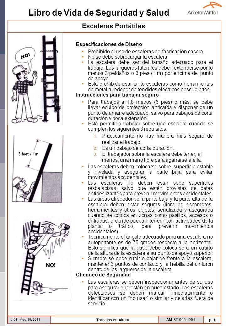 Libro de Vida de Seguridad y Salud AM ST 003 - 001 p.