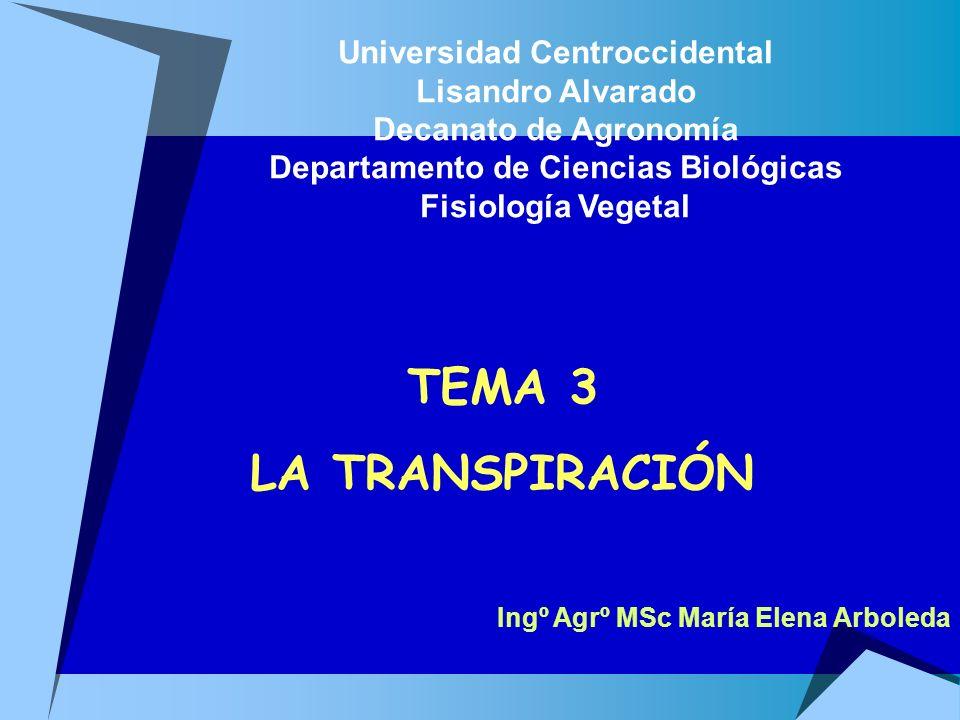 TEMA 3 LA TRANSPIRACIÓN Universidad Centroccidental Lisandro Alvarado Decanato de Agronomía Departamento de Ciencias Biológicas Fisiología Vegetal Ing