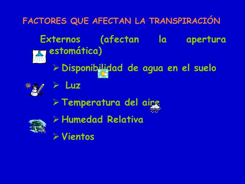 FACTORES QUE AFECTAN LA TRANSPIRACIÓN Externos (afectan la apertura estomática) Disponibilidad de agua en el suelo Luz Temperatura del aire Humedad Re