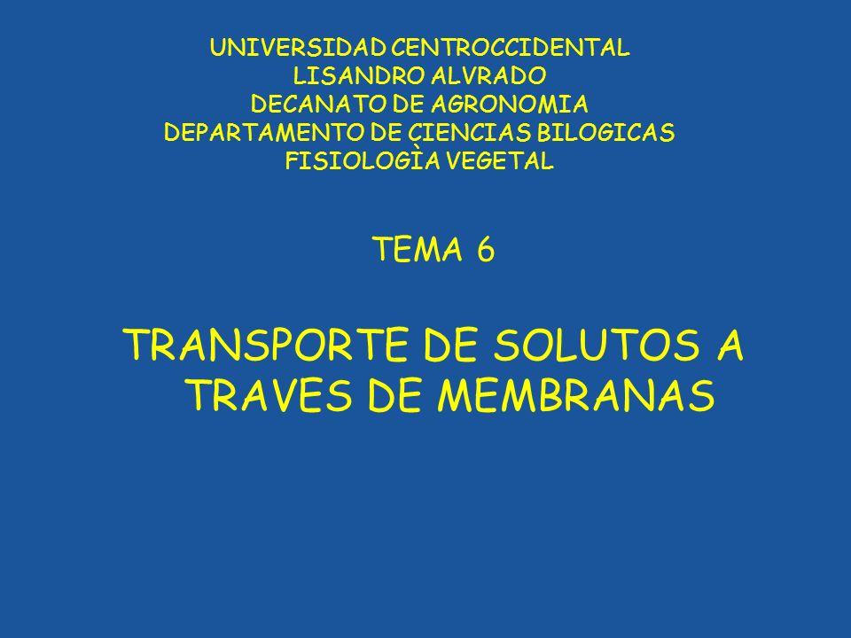 UNIVERSIDAD CENTROCCIDENTAL LISANDRO ALVRADO DECANATO DE AGRONOMIA DEPARTAMENTO DE CIENCIAS BILOGICAS FISIOLOGÌA VEGETAL TEMA 6 TRANSPORTE DE SOLUTOS