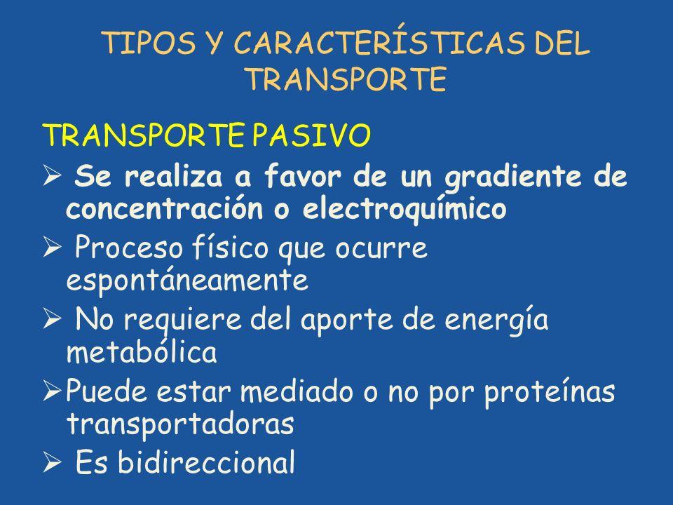 TIPOS Y CARACTERÍSTICAS DEL TRANSPORTE TRANSPORTE PASIVO Se realiza a favor de un gradiente de concentración o electroquímico Proceso físico que ocurr