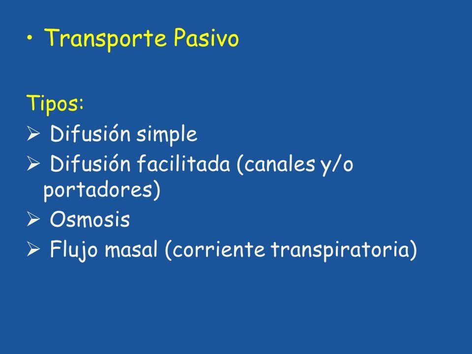 Transporte Pasivo Tipos: Difusión simple Difusión facilitada (canales y/o portadores) Osmosis Flujo masal (corriente transpiratoria)