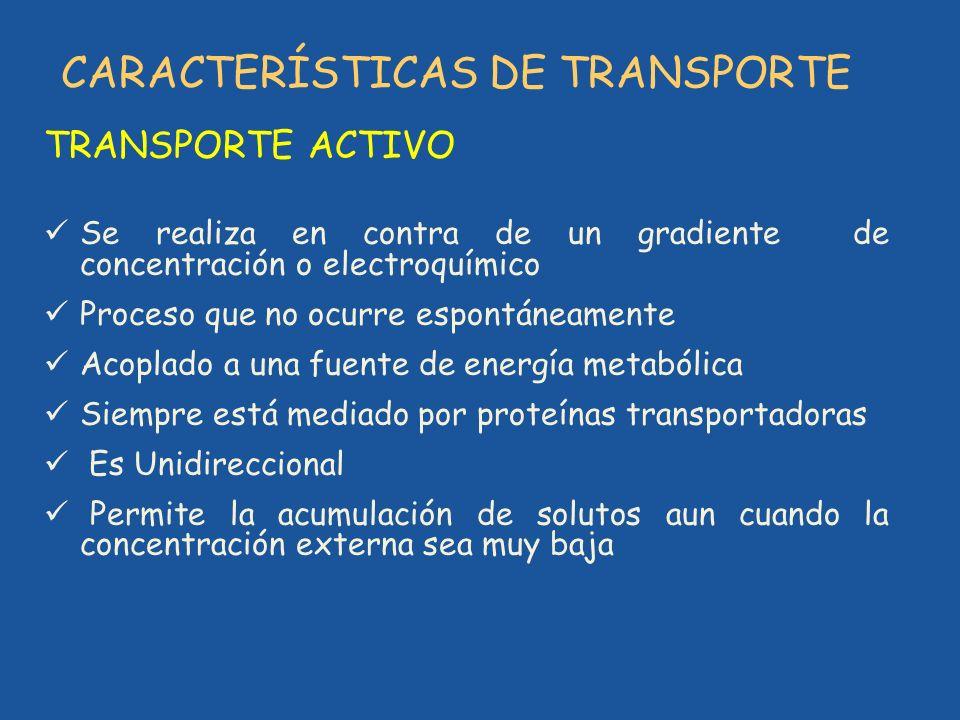 CARACTERÍSTICAS DE TRANSPORTE TRANSPORTE ACTIVO Se realiza en contra de un gradiente de concentración o electroquímico Proceso que no ocurre espontáne