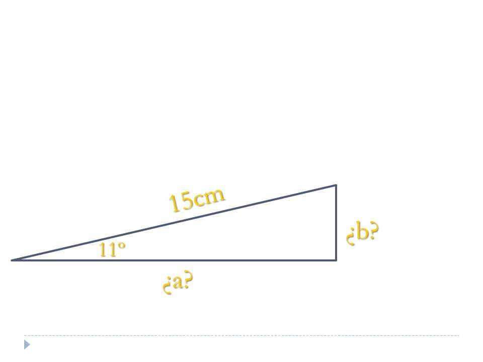 15cm ¿b? 11º ¿a?