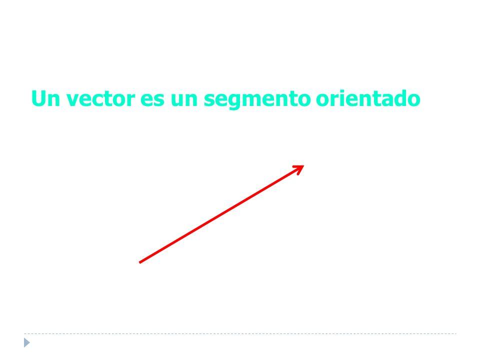 Un vector es un segmento orientado