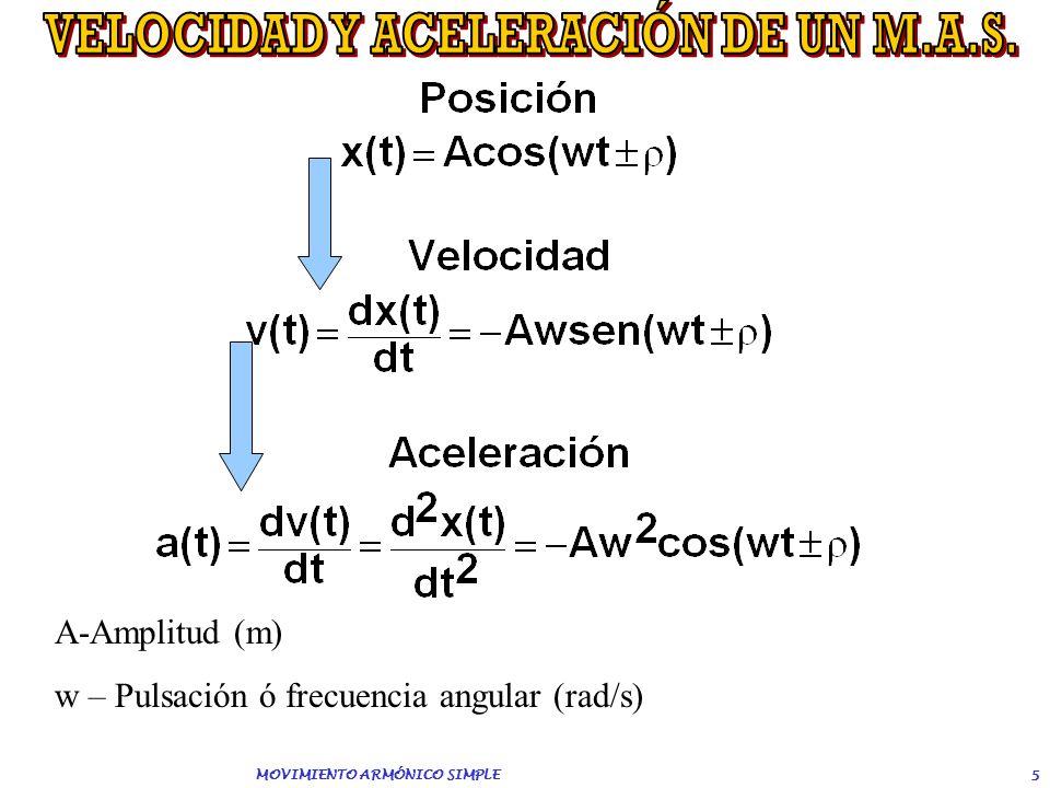 4 x=-Ax=0 x=A x(t) POSICIÓN DE EQUILIBRIO A AMPLITUD x(t) Elongación Posición de equilibrio – Punto donde no actúan las fuerzas restauradoras. Se suel