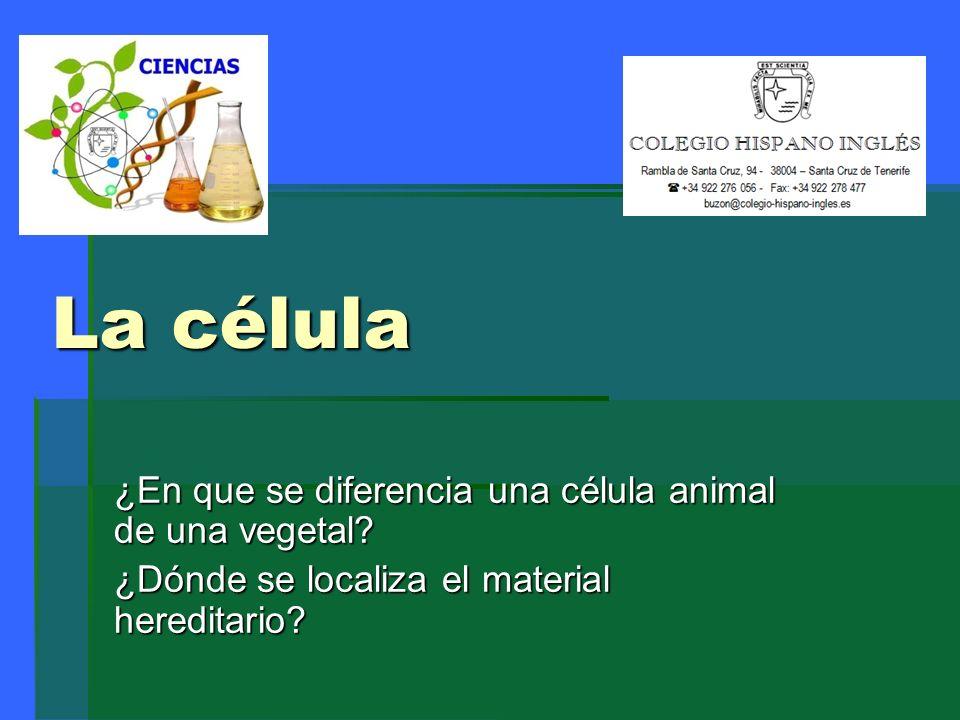 Definición de célula.Es la unidad anatómico y funcional de todo ser vivo.