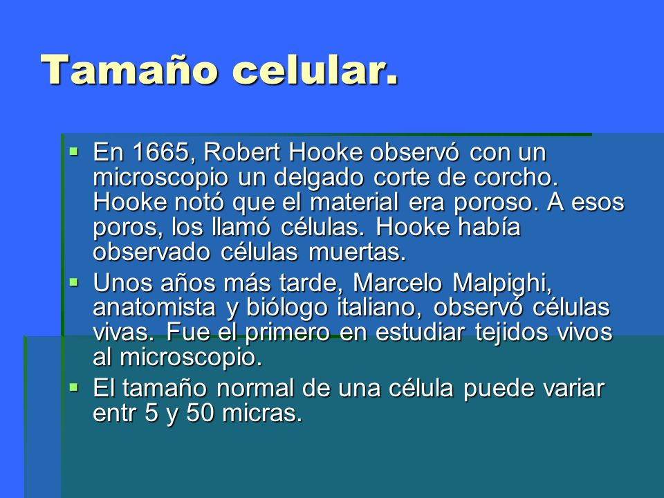 Clasificacion celular.1 Células procariotas Las células procariotas no poseen un núcleo celular delimitado por una membrana.