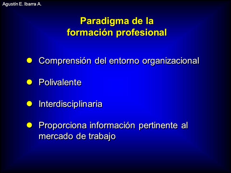 Comprensión del entorno organizacional Polivalente Interdisciplinaria Proporciona información pertinente al mercado de trabajo Comprensión del entorno organizacional Polivalente Interdisciplinaria Proporciona información pertinente al mercado de trabajo Agustín E.