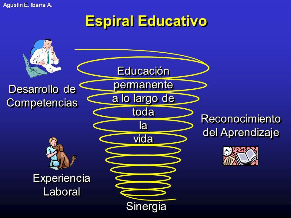 Espiral Educativo Reconocimiento del Aprendizaje Experiencia Laboral Desarrollo de Competencias Educación permanente a lo largo de todalavida Educación permanente a lo largo de todalavida SinergiaSinergia Agustín E.