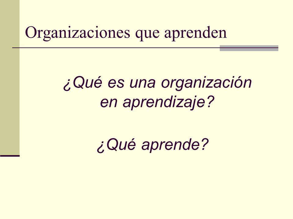 ¿Qué es una organización en aprendizaje? Organizaciones que aprenden ¿Qué aprende?