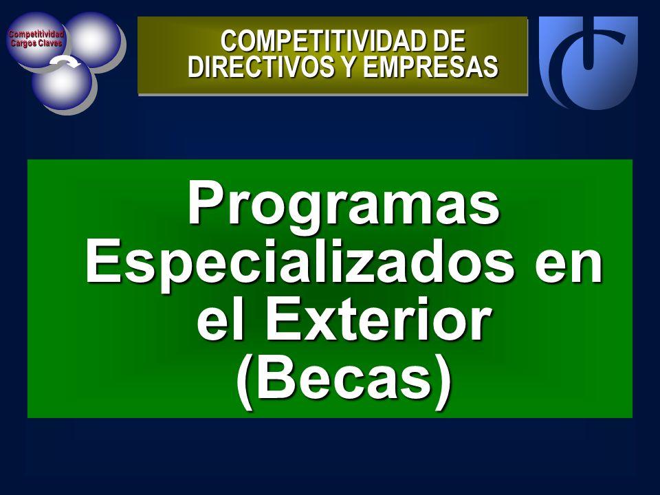Competitividad Cargos Claves Programas Especializados en el Exterior (Becas) COMPETITIVIDAD DE DIRECTIVOS Y EMPRESAS