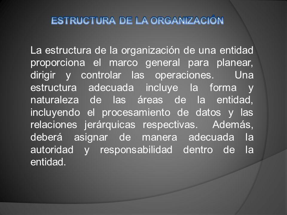 La estructura de la organización de una entidad proporciona el marco general para planear, dirigir y controlar las operaciones.