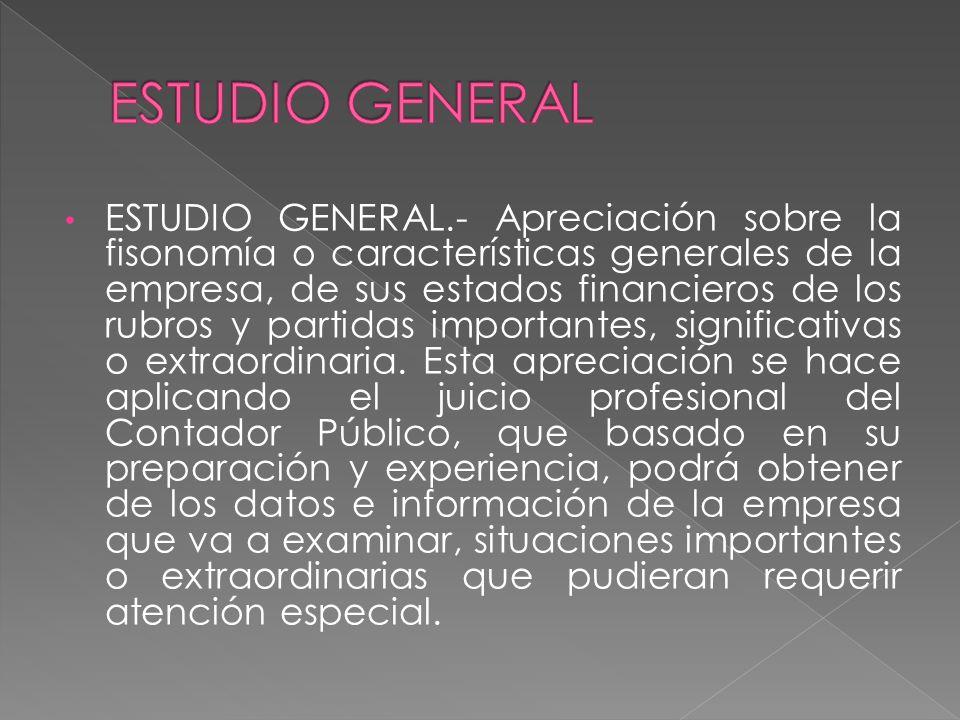 ESTUDIO GENERAL.- Apreciación sobre la fisonomía o características generales de la empresa, de sus estados financieros de los rubros y partidas import