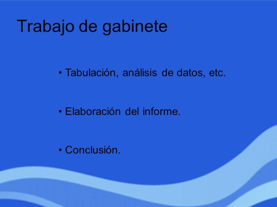 Trabajo de gabinete Tabulación, análisis de datos, etc. Elaboración del informe. Conclusión.