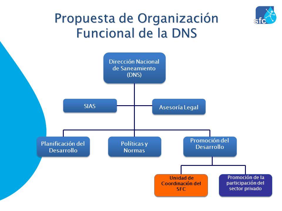 Propuesta de Organización Funcional de la DNS Dirección Nacional de Saneamiento (DNS) Promoción de la participación del sector privado Políticas y Nor