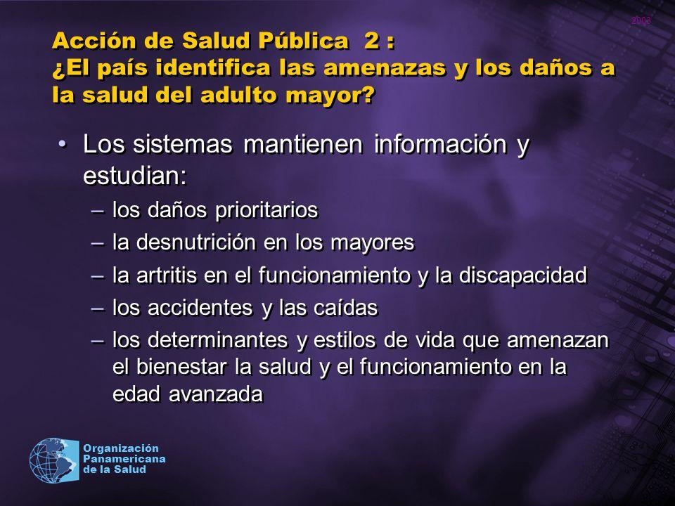 2003 Organización Panamericana de la Salud Acción de Salud Pública 2 : ¿El país identifica las amenazas y los daños a la salud del adulto mayor? Los s