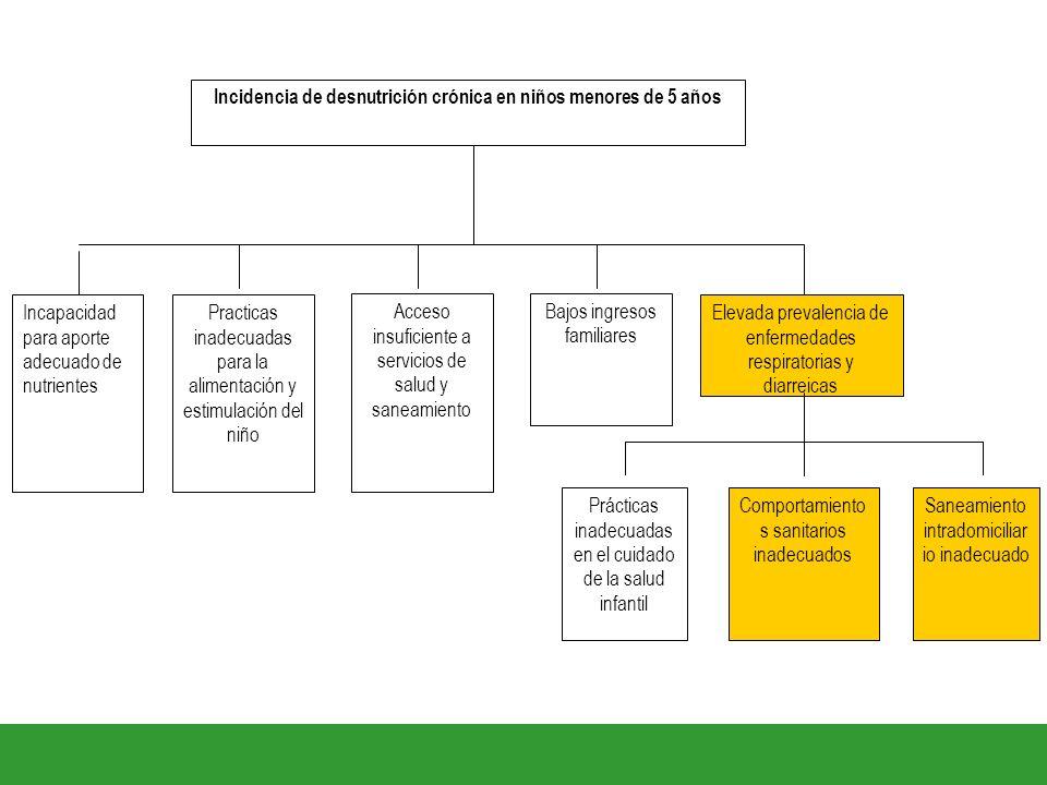 Practicas inadecuadas para la alimentación y estimulación del niño Incapacidad para aporte adecuado de nutrientes Elevada prevalencia de enfermedades