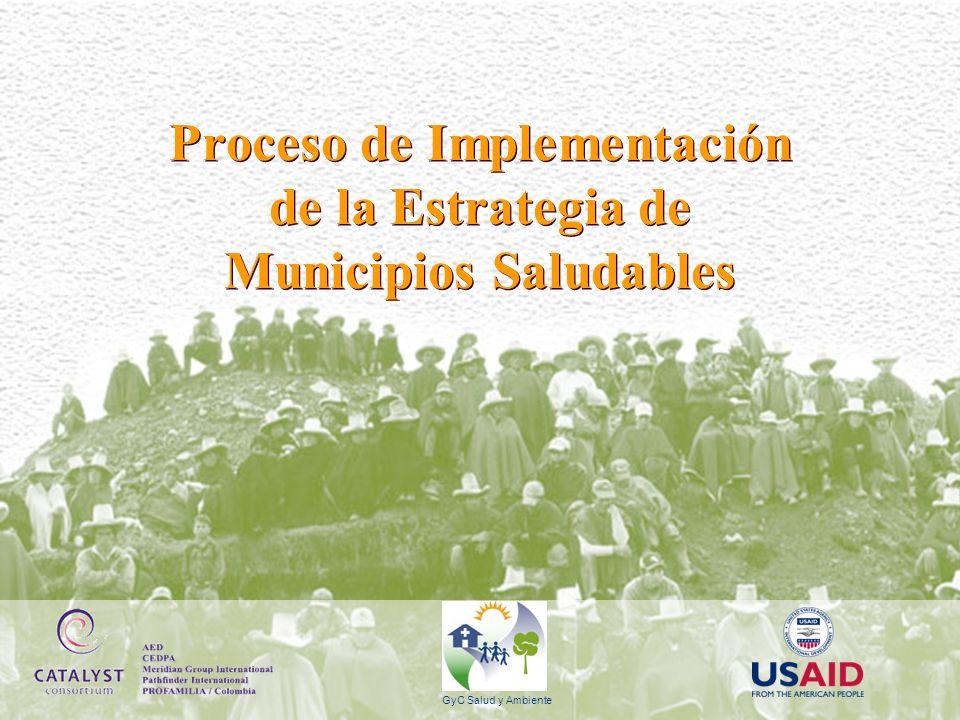 Estrategia de Municipios Saludables Escuelas Promotoras De la salud Barrios Saludables Servicios de Salud Mercados Saludables Familias Saludables.