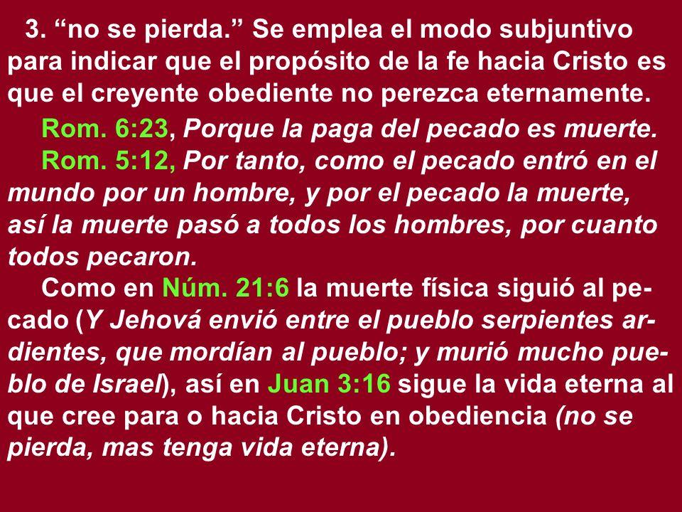 3. no se pierda. Se emplea el modo subjuntivo para indicar que el propósito de la fe hacia Cristo es que el creyente obediente no perezca eternamente.