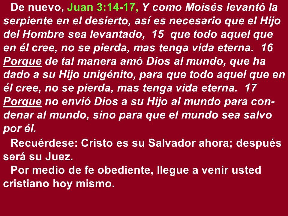De nuevo, Juan 3:14-17, Y como Moisés levantó la serpiente en el desierto, así es necesario que el Hijo del Hombre sea levantado, 15 que todo aquel qu
