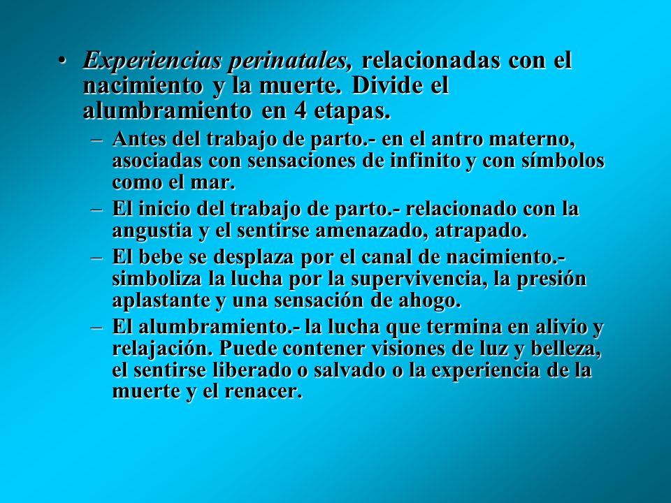 Divide la experiencia psicodélica en 4 categorías: 1. Experiencias abstractas, las cuales poseen un carácter eminentemente sensorial, como la percepci