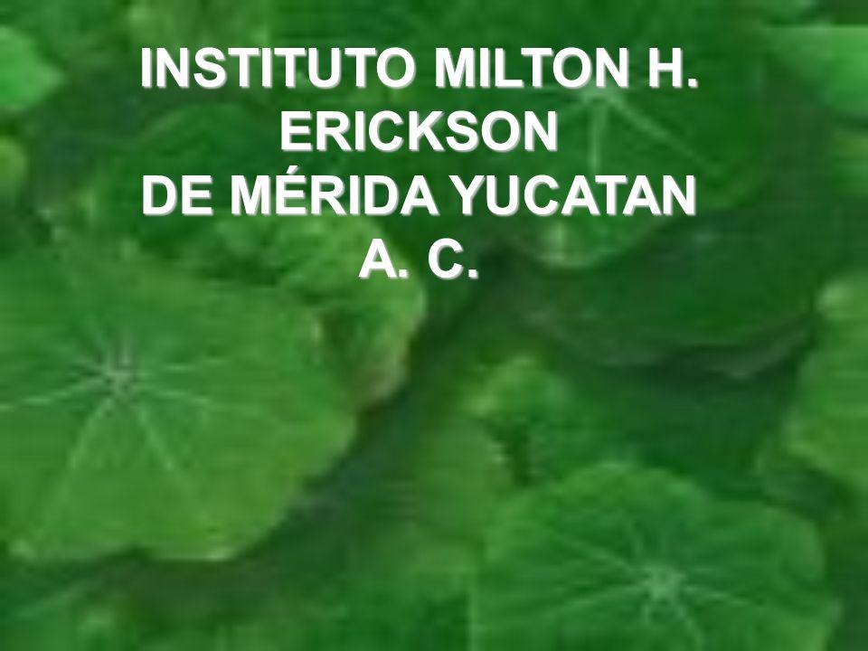 INSTITUTO MILTON H. ERICKSON DE MÉRIDA YUCATAN A. C.