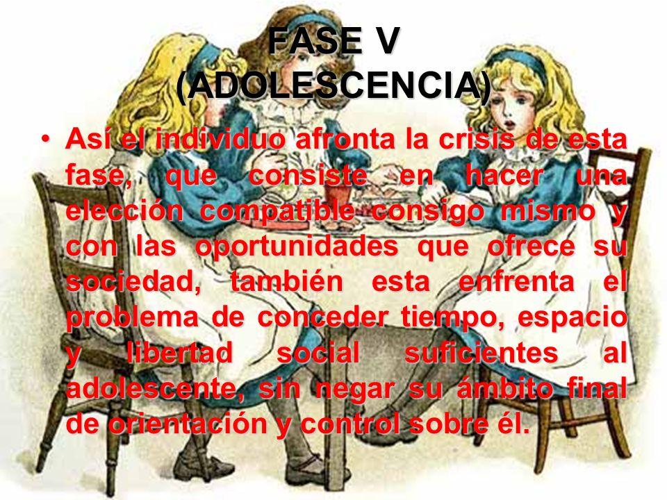 FASE V (ADOLESCENCIA) Dichas relaciones con los pares desempeñan la función de una autoridad esencial para el completamiento de la identidad del yo. L