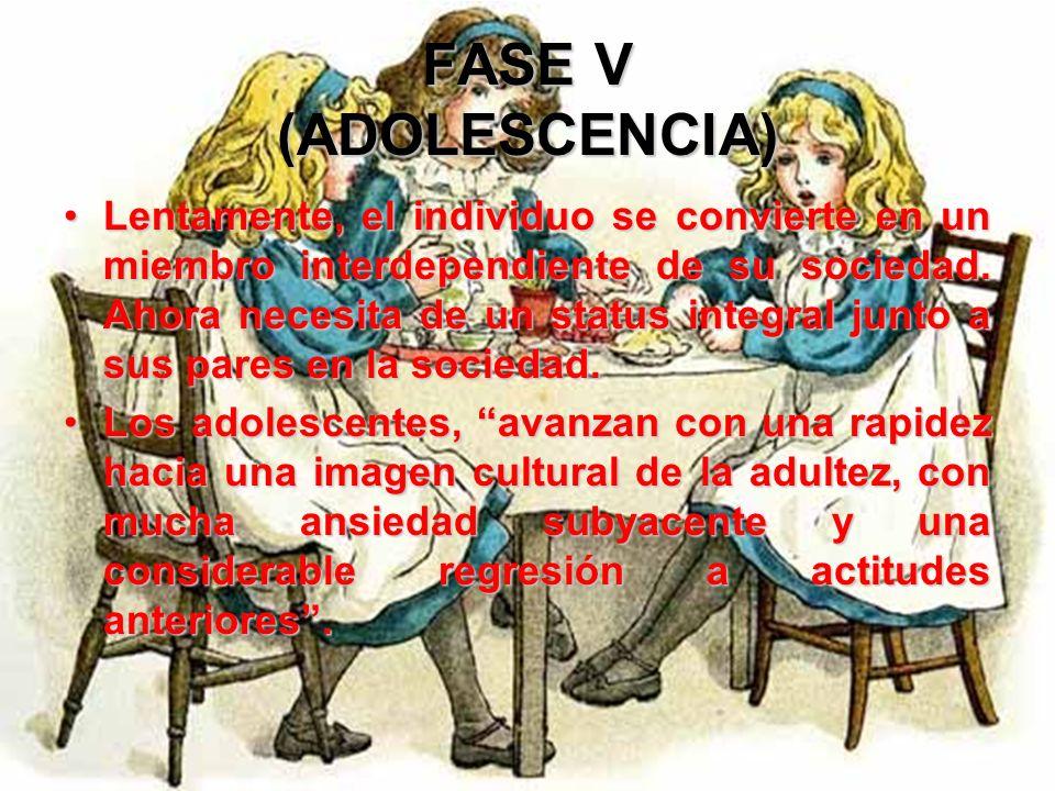 FASE V (ADOLESCENCIA) En suma, lo que Erikson hace es, establecer una vinculación entre la irritante experiencia de la sociedad con la juventud y el d