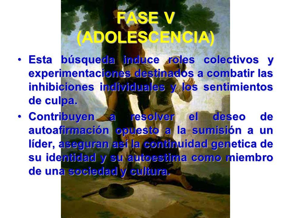 FASE V (ADOLESCENCIA) El joven también ve en los valores, la religión y la ideología de su cultura una importante fuente de confianza. La religión y l