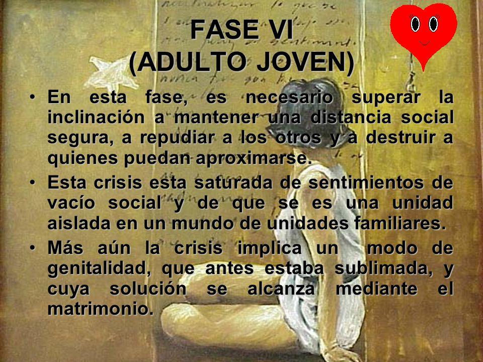 FASE VI (ADULTO JOVEN) Hallar un sentido de la solidaridad en la elección de un compañero que representa el ideal de toda la experiencia anterior con