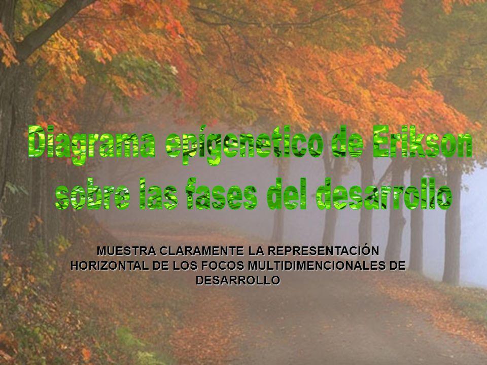 FASE VIII (EDAD MADURA) LOS NIÑOS SANOS NO TEMERÁN A LA VIDA, SI LOS PADRES POSEEN UNA INTEGRIDAD SUFICIENTE COMO PARA NO TEMER A LA MUERTE.LOS NIÑOS