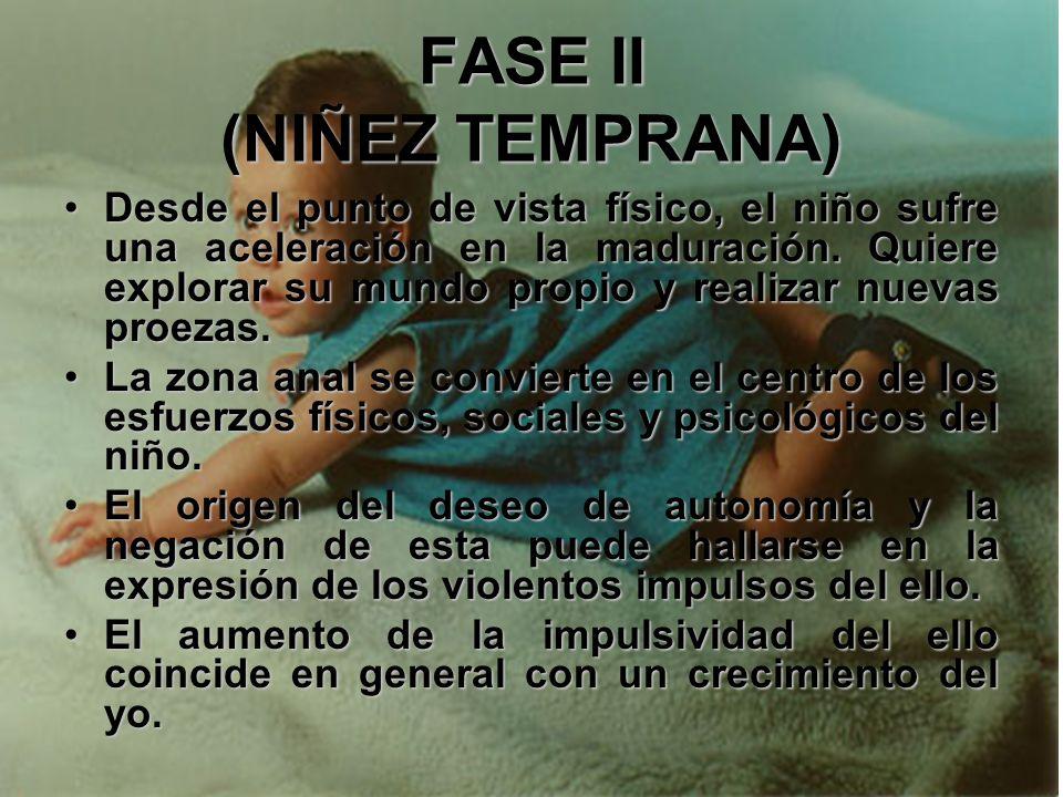 FASE II (NIÑEZ TEMPRANA) En este momento, el niño necesita una guía sensible y comprensiva, así como un apoyo graduado.En este momento, el niño necesi