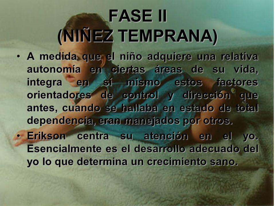 FASE II (NIÑEZ TEMPRANA) Una mayor movilidad, una percepción más refinada, el mejoramiento de la memoria y una mayor capacidad de integración neurológ