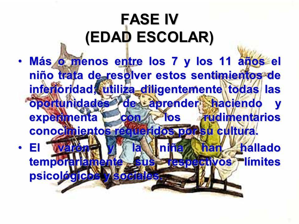 FASE IV (EDAD ESCOLAR) Pronto comprende que necesita hallar un lugar entre individuos de su misma edad, porque en su carácter de niño pequeño en edad