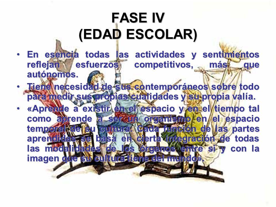 FASE IV (EDAD ESCOLAR) La mayoría de sus esfuerzos están consagrados al mejoramiento de sus procesos yoicos, porque su sociedad le da a entender que e