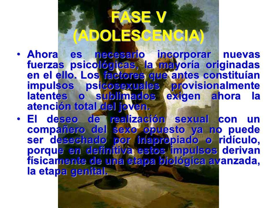 FASE V (ADOLESCENCIA) Busca confirmamiento en sus pares, que también se encuentran en estado de cambio y necesitados de aprobación. Los ritos de la pu