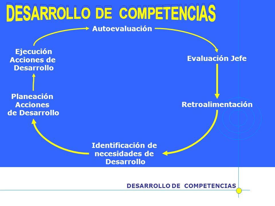 DESARROLLO DE COMPETENCIAS Autoevaluación Evaluación Jefe Identificación de necesidades de Desarrollo Retroalimentación Planeación Acciones de Desarro