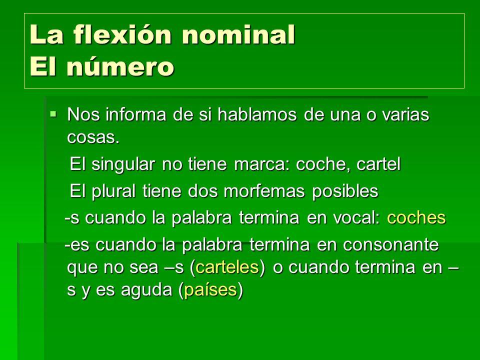 La flexión nominal El número Nos informa de si hablamos de una o varias cosas. Nos informa de si hablamos de una o varias cosas. El singular no tiene