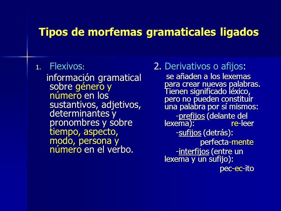 Tipos de morfemas gramaticales ligados Tipos de morfemas gramaticales ligados 1. Flexivos : información gramatical sobre género y número en los sustan