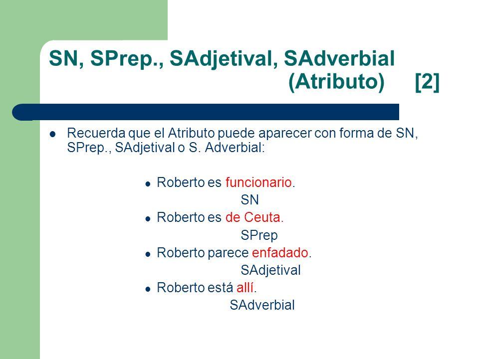 SN, SPrep., SAdjetival, SAdverbial (Atributo) [2] Recuerda que el Atributo puede aparecer con forma de SN, SPrep., SAdjetival o S. Adverbial: Roberto