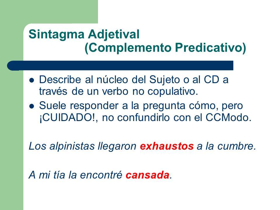 Sintagma Adjetival (Complemento Predicativo) Describe al núcleo del Sujeto o al CD a través de un verbo no copulativo. Suele responder a la pregunta c